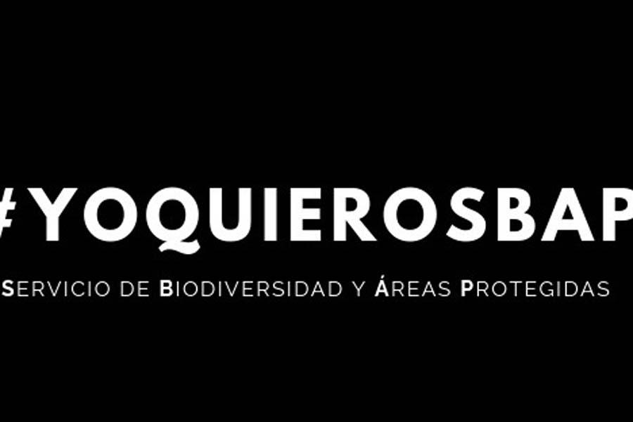 Senado aprobó el proyecto de ley que crea el Servicio de Biodiversidad y Áreas Protegidas