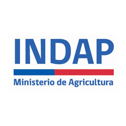 Logo INDAP Instituto de Desarrollo Agropecuario