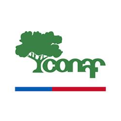 Logo CONAF Corporación Nacional Forestal