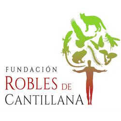 Logo Fundación Robles de Cantillana