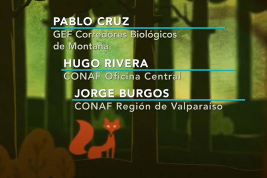 Conceptos y Modelo de Ordenación Forestal construido en Proyecto del APL de Bosques de la V Región