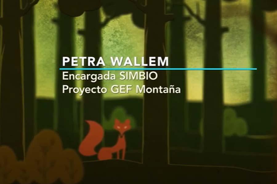 Petra Wallem: Nivel de referencia propuesto por GEF Corredores Biológicos de Montaña