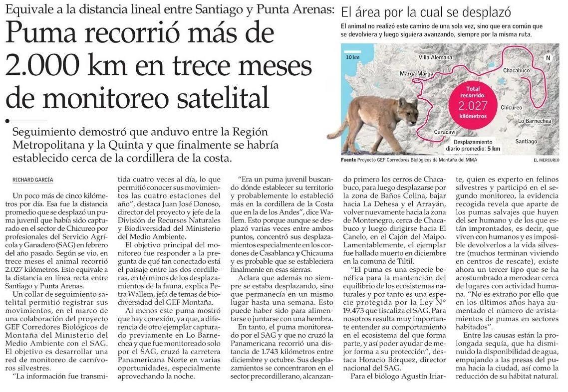 Puma recorre mas de 2000 Km en trece meses de monitoreo satelital