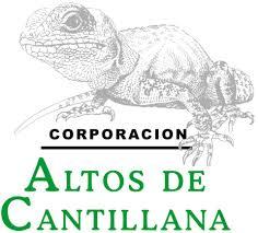 Logo Corporación Altos de Cantillana