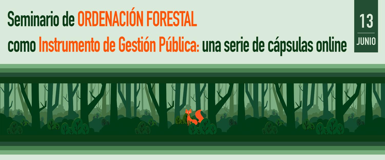 Seminario de Ordenación Forestal como Instrumento de Gestión Pública: una serie de cápsulas online
