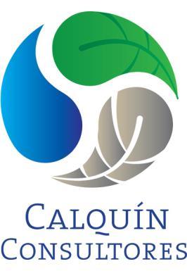 Logo Calquín Consultores